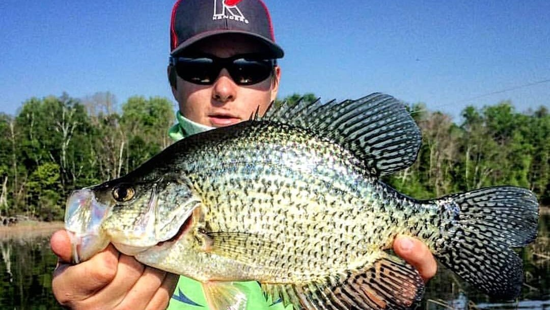 Crappie Essentials List for Toledo Bend