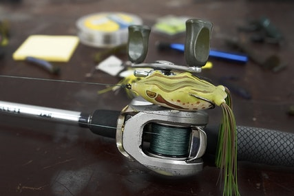 Frog Fishing Essentials